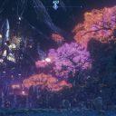 ゼノブレイド2 フォンス・マイムの夜景